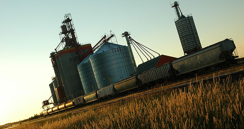 Wheat field with grain elevators and rail cars in background